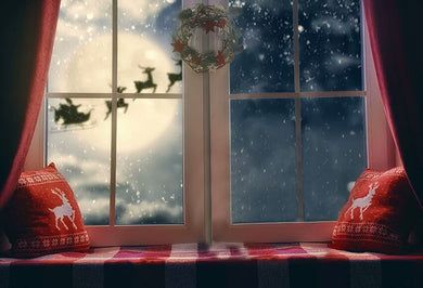 Window Background Christmas Backdrop