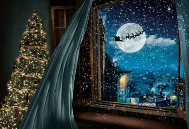 Winter Background Christmas Backdrop