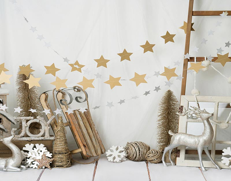 Children Photo Backdrop Christmas Background