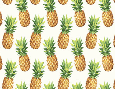 Pineapple background kids photography