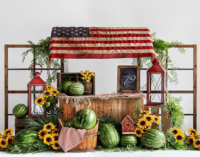 American Flag Background Summer Watermelon Backdrop