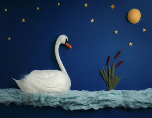 Blue Swan Background Newborn Backdrop