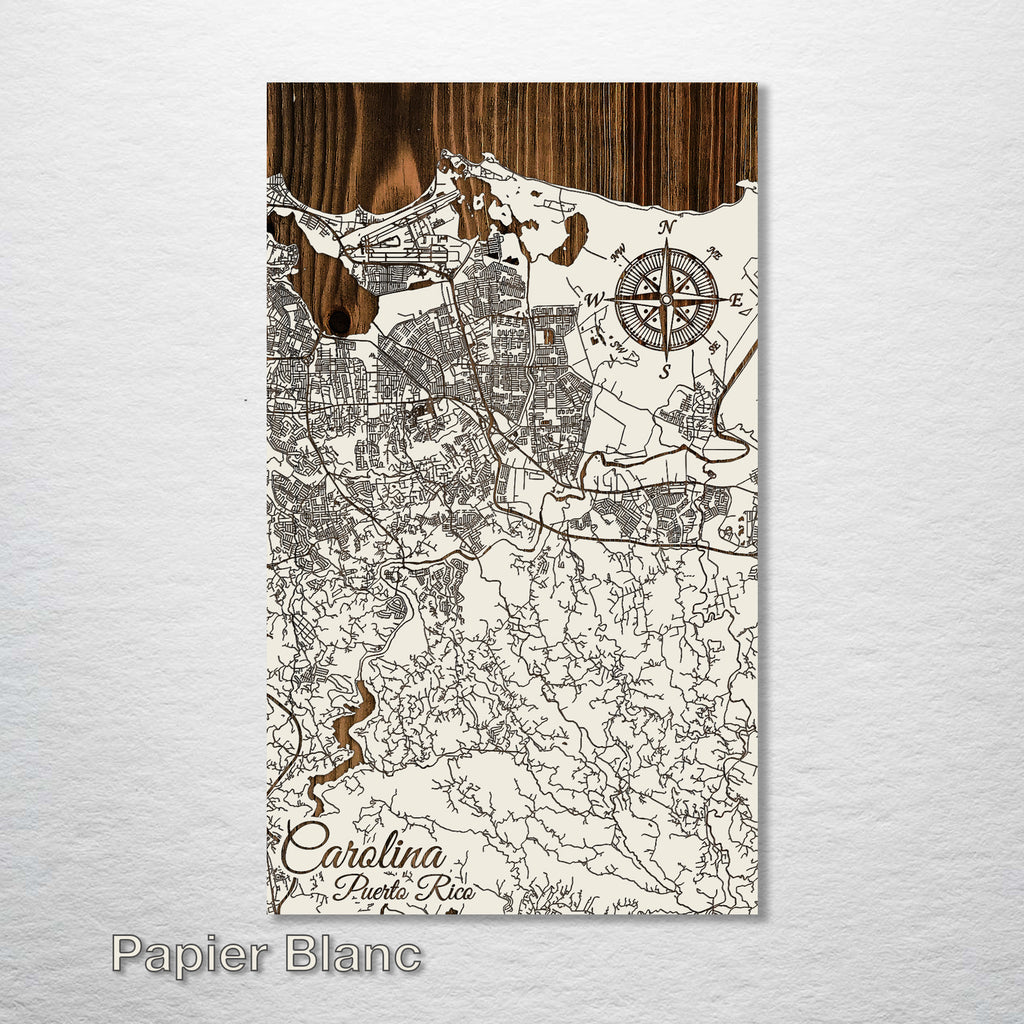 Carolina, Puerto Rico Street Map - Fire & Pine