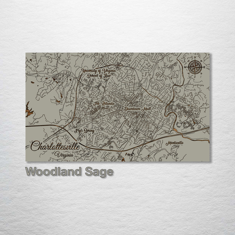 Charlottesville, Virginia Whimsical Map