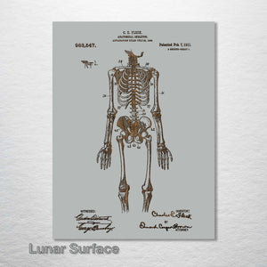 1911 Anatomical Skeleton Patent