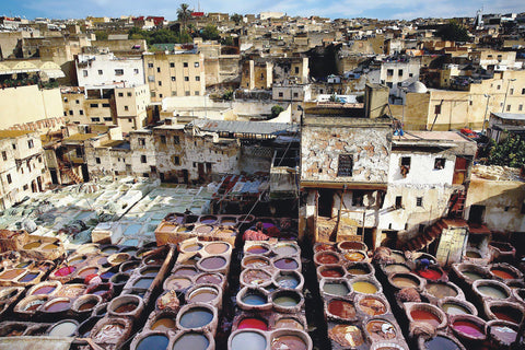 A Look Inside A Moroccan Tannery