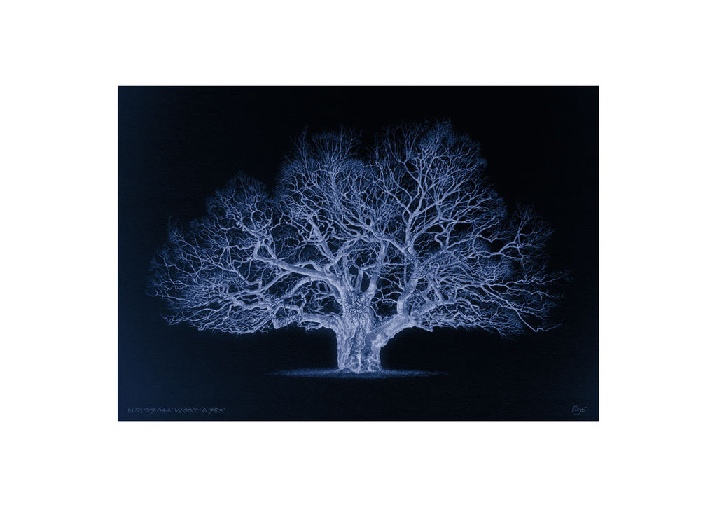Oak – N 51°27.044' W 000°16.783' Duotone Blue (A4)