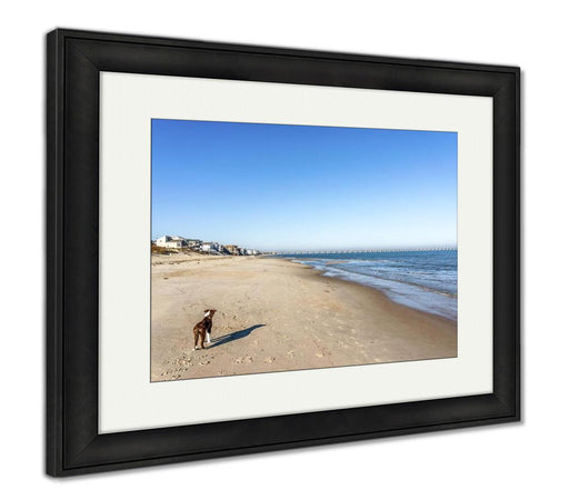 Framed Print, Bordeer Collie On Beach - emeralds-gift-palace