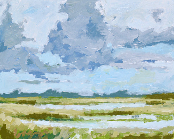 Dreamy Marsh