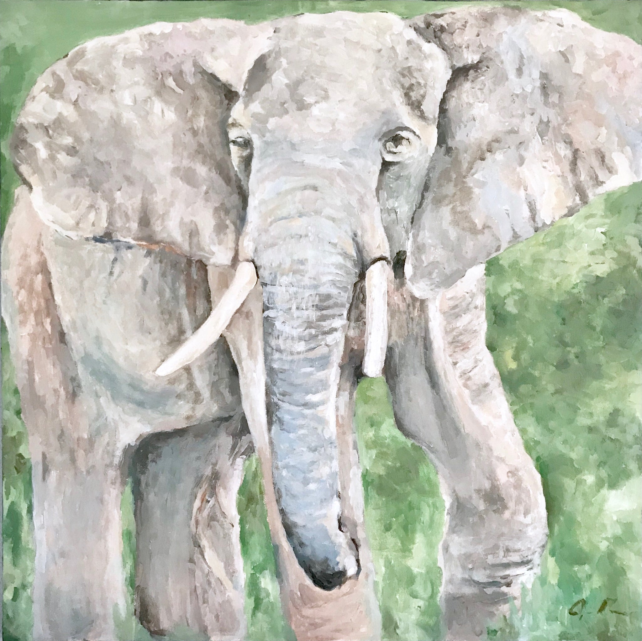 Elephant for Health - 30x30