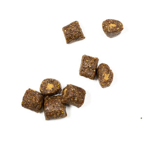 Organic Cacao Coconut Breakfast Energy Bites -Plant Based, Natural, Gluten Free, No Added Sugar, Non GMO, Kosher, Healthy Snack