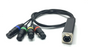 Cat5 to (4) XLR Female Shuttle Snake