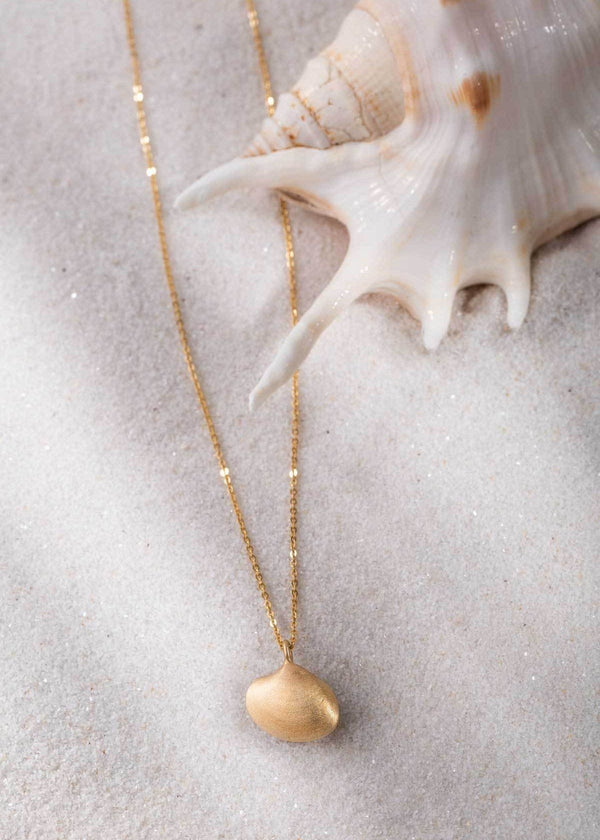 Sunray Seashell Necklace - James Michelle