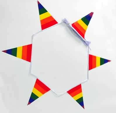 Gay Pride (Rainbow) triangle bunting - 12 metres