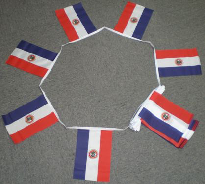 6m 20 Flag Paraguay Bunting