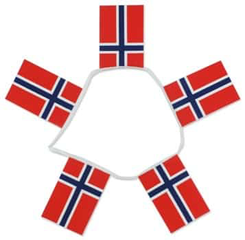 6m 20 Flag Norway Bunting