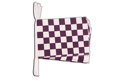 6m 20 Flag Purple/White Checkered Bunting