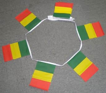 6m 20 Flag Senegal Bunting