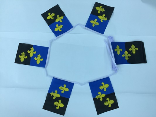 6m 20 Flag Monmouthshire Bunting
