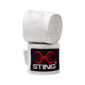 Boxing Bag, Glove & Focus Mitt Combo