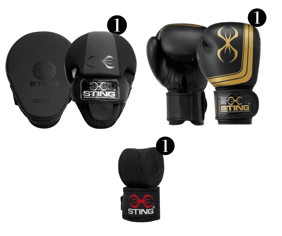Sting Orion Boxing Glove & Focus Mitt Combo