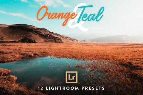 Orange and Teal 10 Presets (Lightroom All Access)