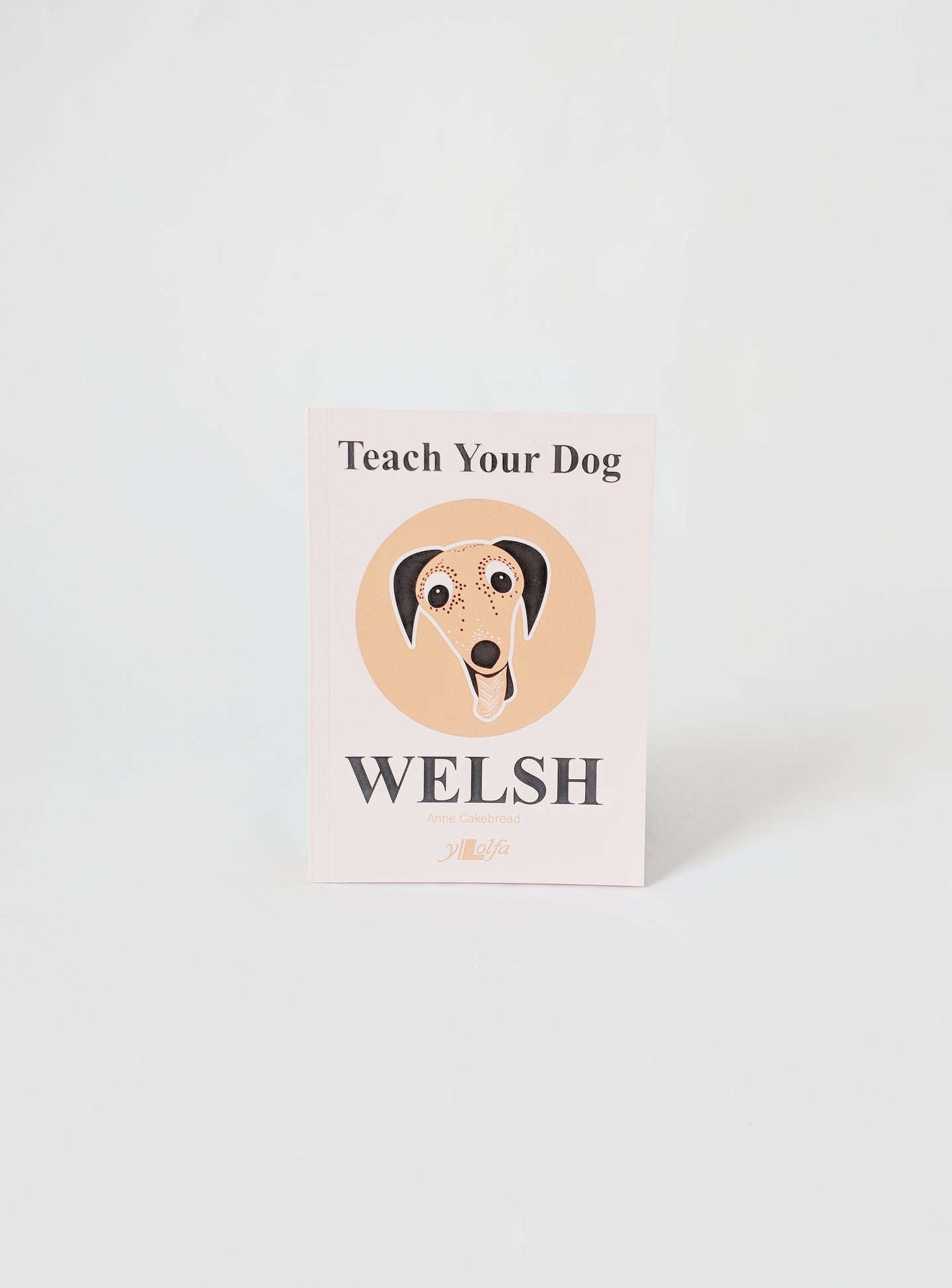 Teach Your Dog Welsh Book