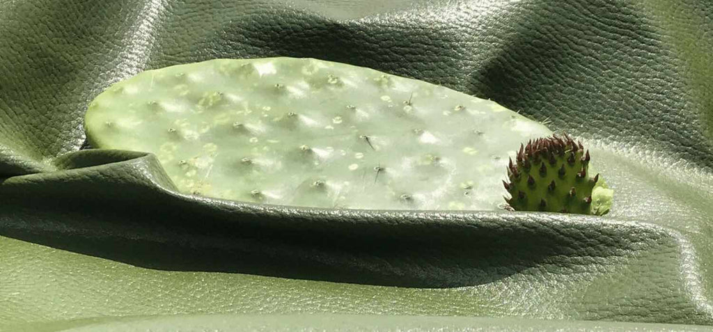 cactus on cactus leather vegan sustainable material