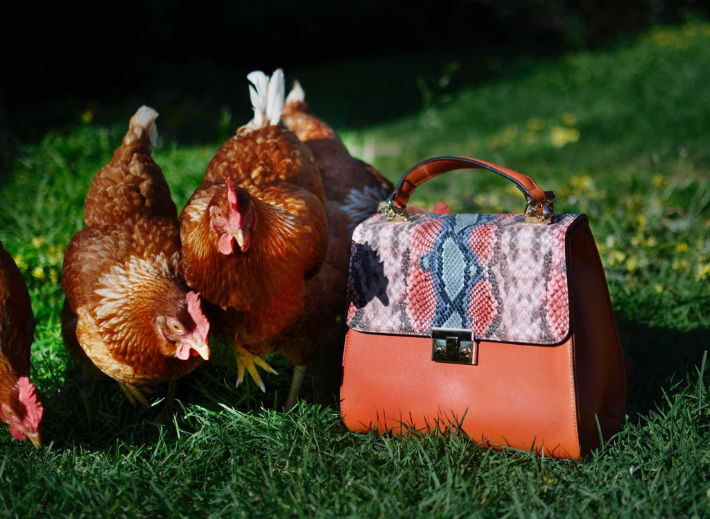chickens and vegan bag from kinds of grace
