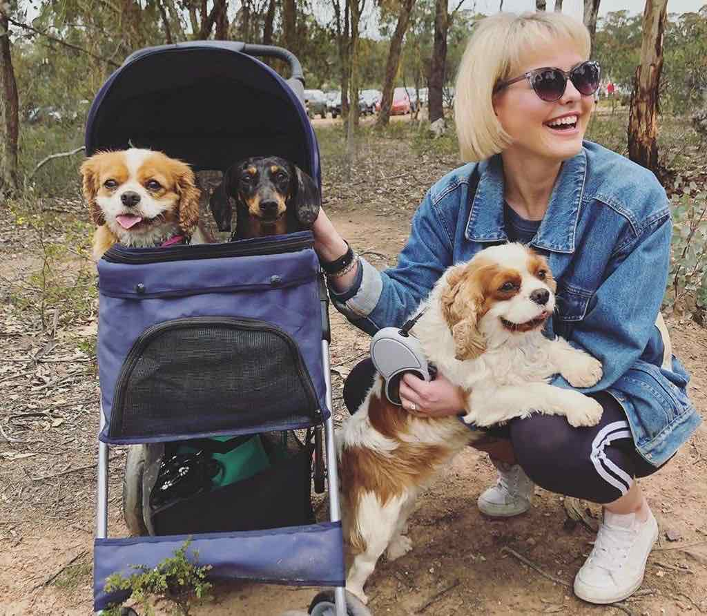 georgie purcell and rescue puppy farm dogs in baby stroller