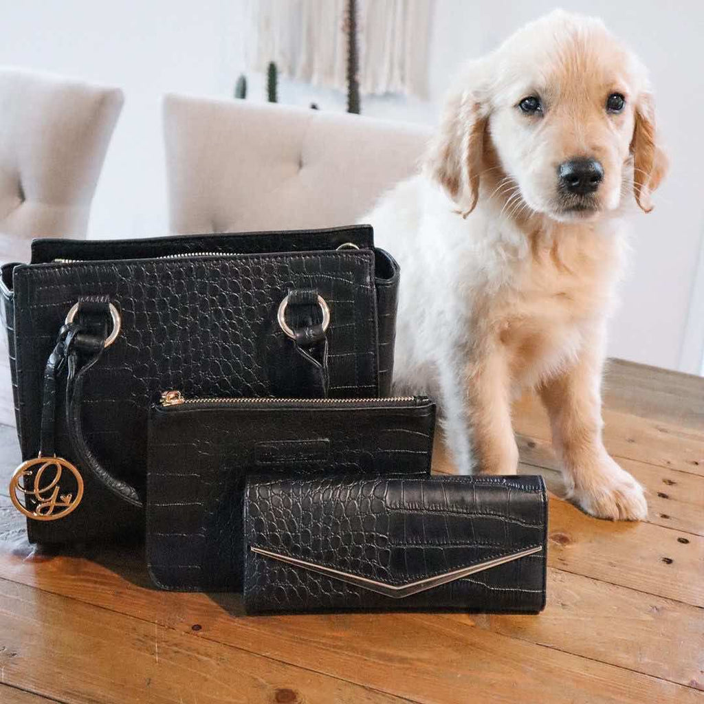 rescued dog and kinds of grace bag