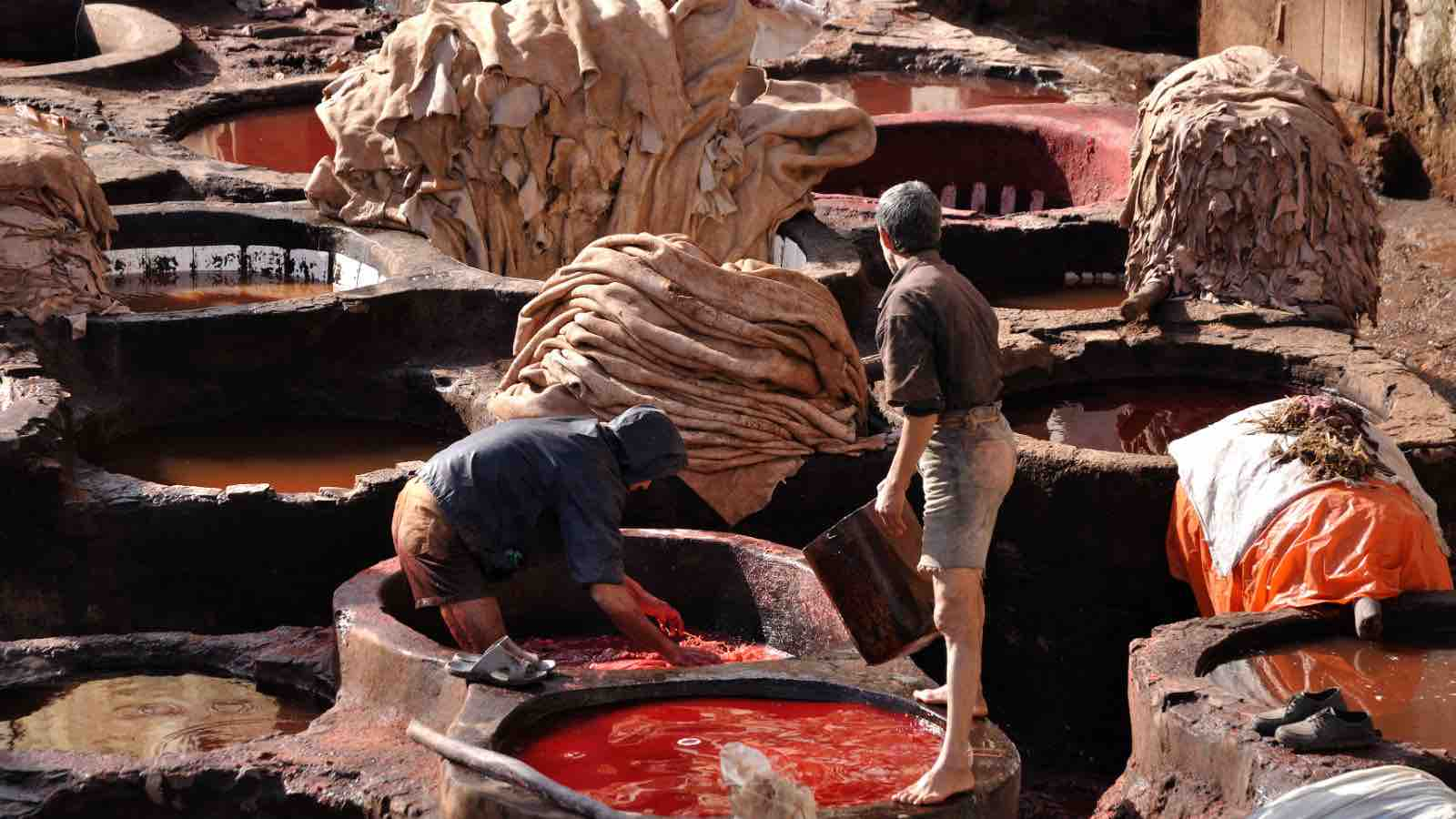 leather tannery human rights issues