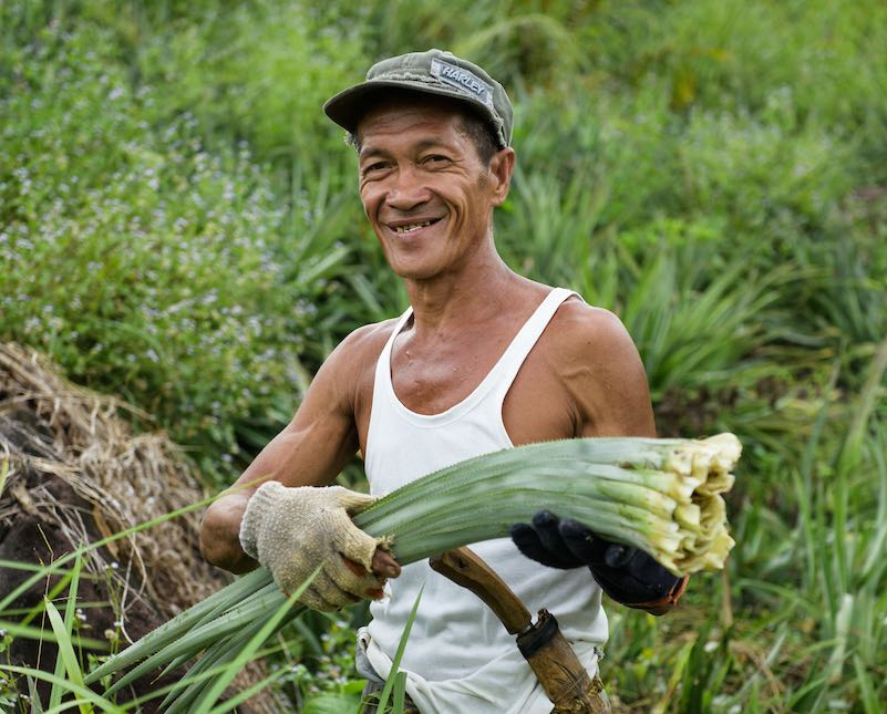 pinatex farmer