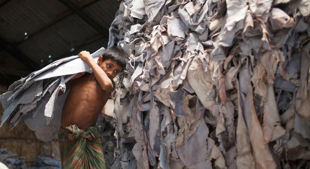 cow skin leather tannery child labour