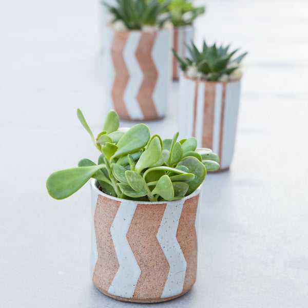Natural Zig Zag Pot
