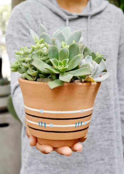 Azul Painted Planter