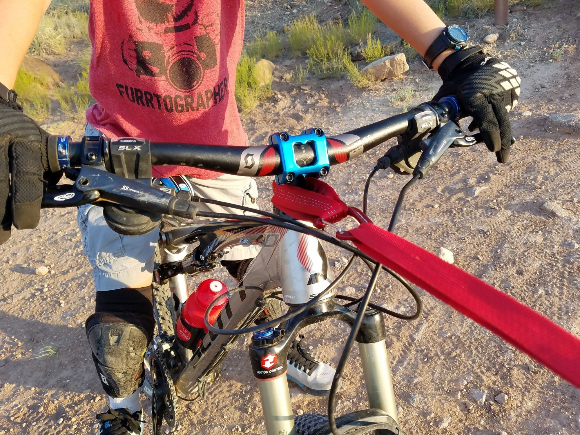 TowWhee bungee connected to a bike using a Quick Loop strap.