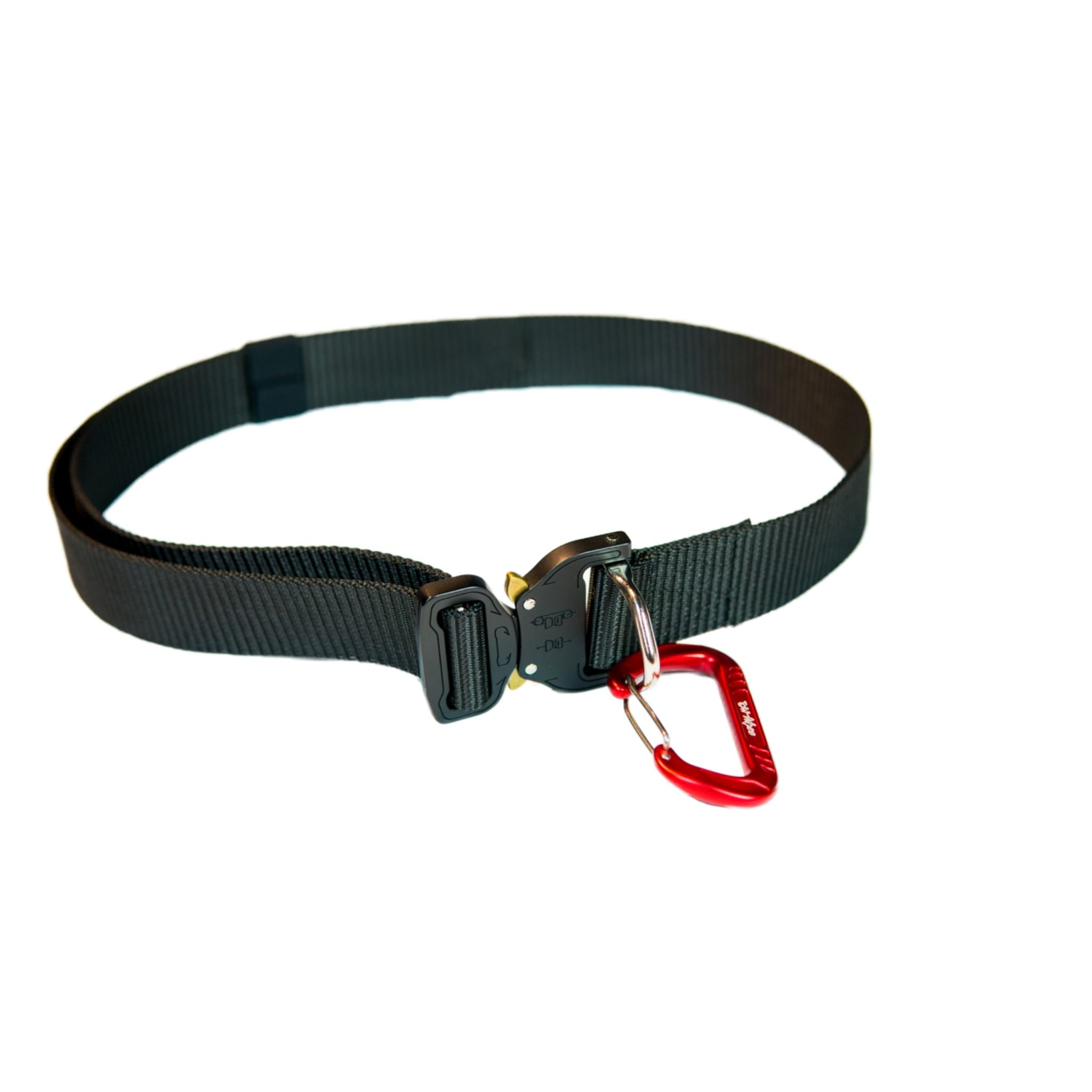 TowWhee Waist belt latched up