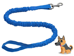 Dog Leash TowWhee
