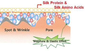Liquid Barrier containing Silk Amino Acids and Protein