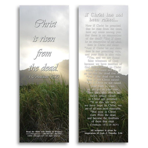 Bible Cards & Bookmarks - If Christ Has Not Been Raised - Pack Of 25 Cards - 2x6