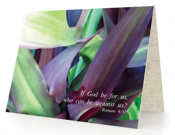 Bible Cards & Bookmarks - If God Is For Us - Box Of 10 Cards And 10 Envelopes