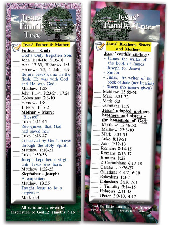 Bible Cards & Bookmarks - Jesus' Family Tree - Pack Of 25 Cards
