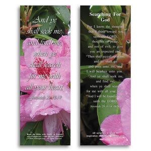 Bible Cards & Bookmarks - Searching For God - Pack Of 25 Cards - 2x6