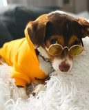 Vintage Pup: Yellow