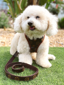 Chewy Vuitton Harness & Leash Set