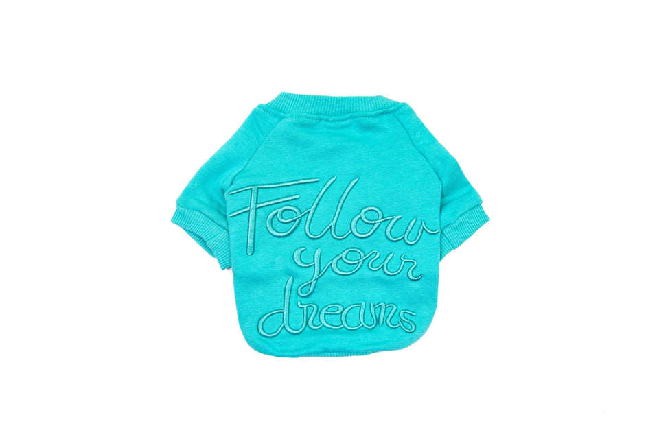 Follow Your Dreams: Pet Sweater