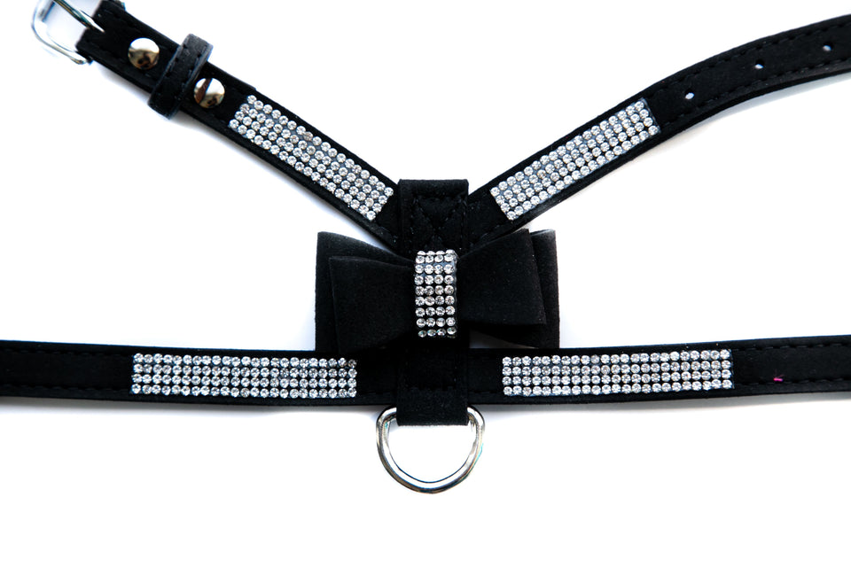 Jasmine Harness & Leash Set: Black
