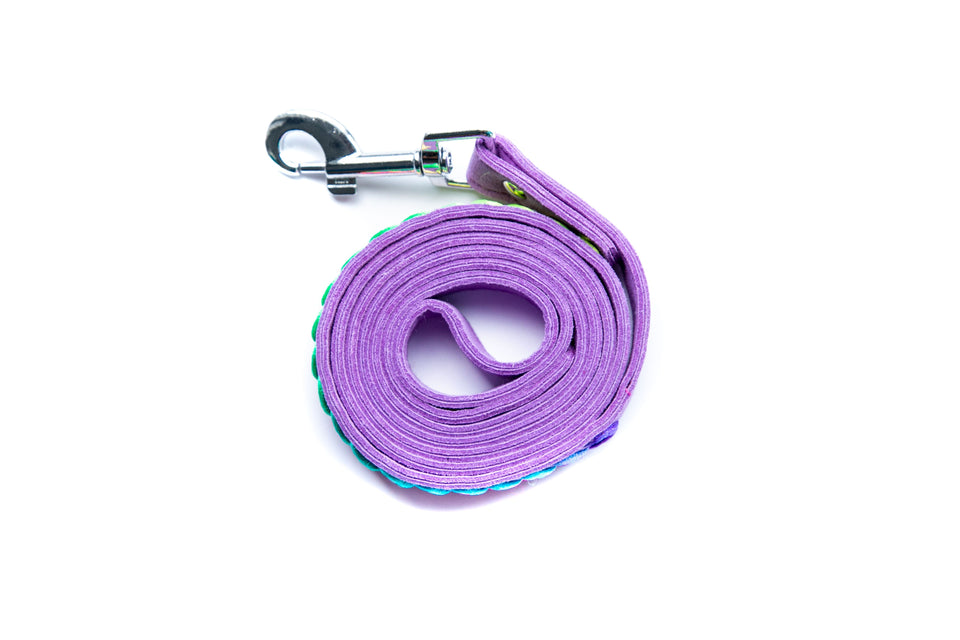 Chella Leash: Purple