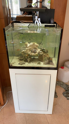 Marine Tank with Internal Overflow System/ Used